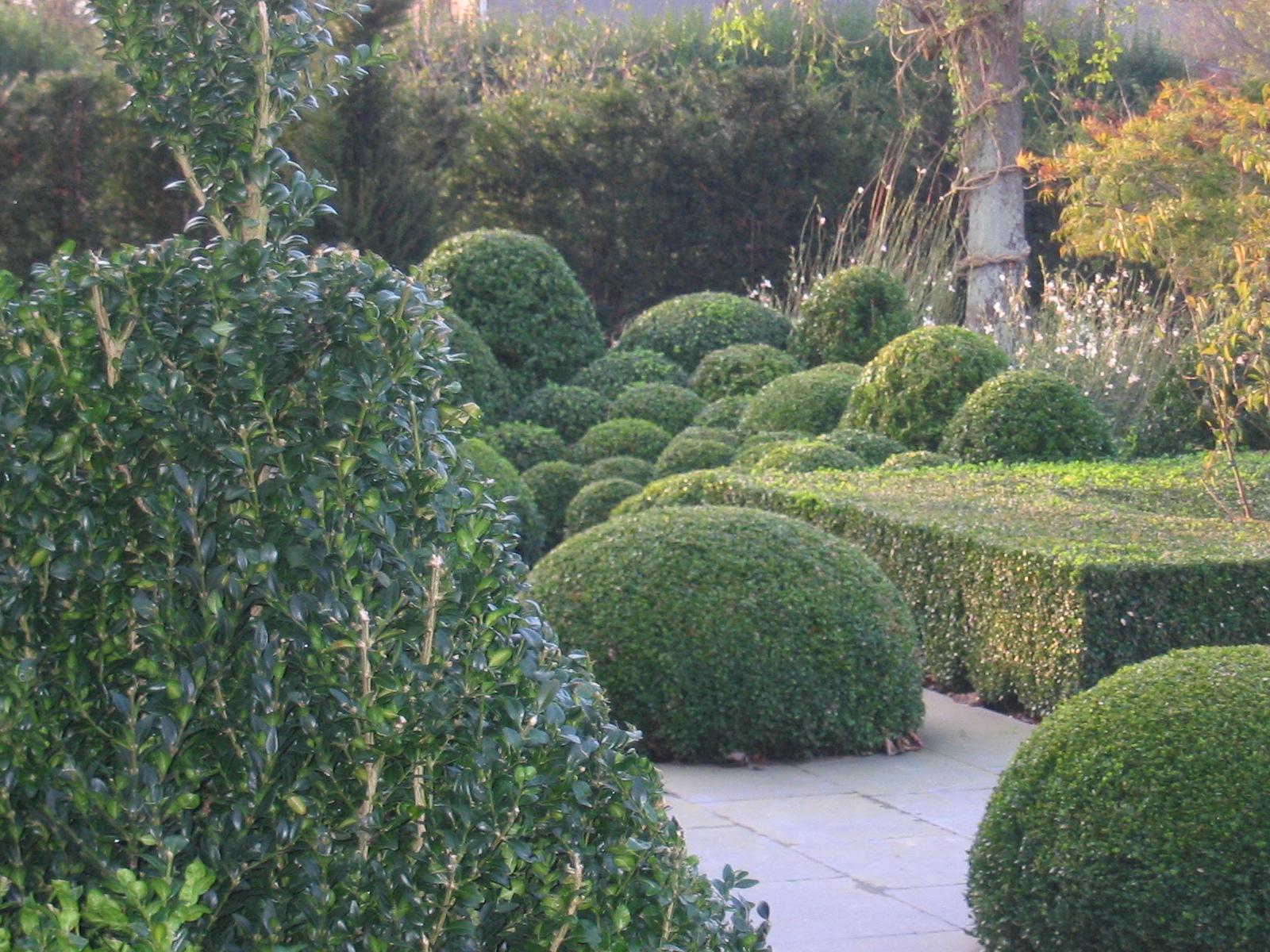 marnix tuinen 007